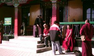Chorten Dharamsala (4)