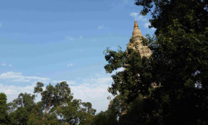 Chorten India Bodhgaya Temple md