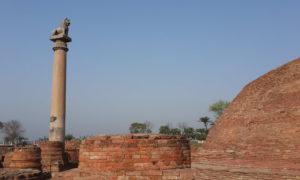Chorten India Vaishali estela - md