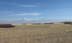 Chortne Tibete Kailash 1405 b (1) g md