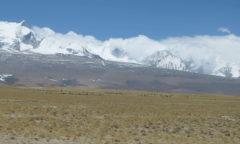 Chortne Tibete Saga Kailash 1405 (101) md