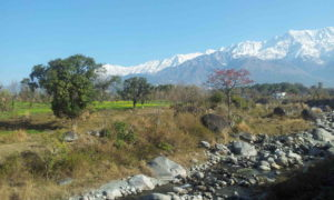 chorten 20130220_091807 dharamsala - md
