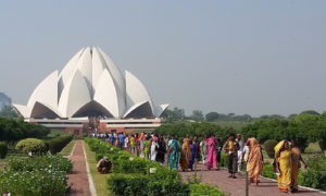 Chorten Delhi Lotus