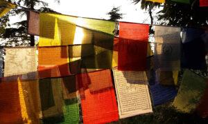 Chorten India Dharamsala flags md